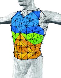 Фиг. 3. Трикомпонентен геометричен модел на гръдната стена, създаден от Aliverti et al.10 за описване на движенията на гръдната стена.