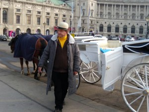 Виена - карета