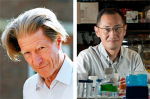 Left: Sir John B. Gurdon, D.Phil., D.Sc., F.R.S. Photograph by John Overton, Brown Group, Gurdon Institute. Right: Shinya Yamanaka, M.D., Ph.D. Used by permission from the Gladstone Institutes/Chris Goodfellow.