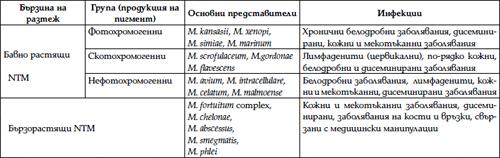 Таблица 1: Работна класификация на NTM