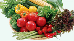 д-р Коста Костов за вегетарианството
