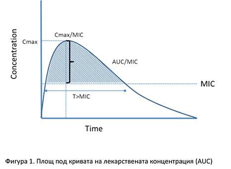 sm5-Fig.1