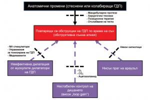 Фиг. 2. Схематично представяне на четирите основни фенотипни белега, обуславящи възникването на ОСА, и потенциални възможнос- ти за терапия, различна от CPAP. NH – nervus hypoglossus20
