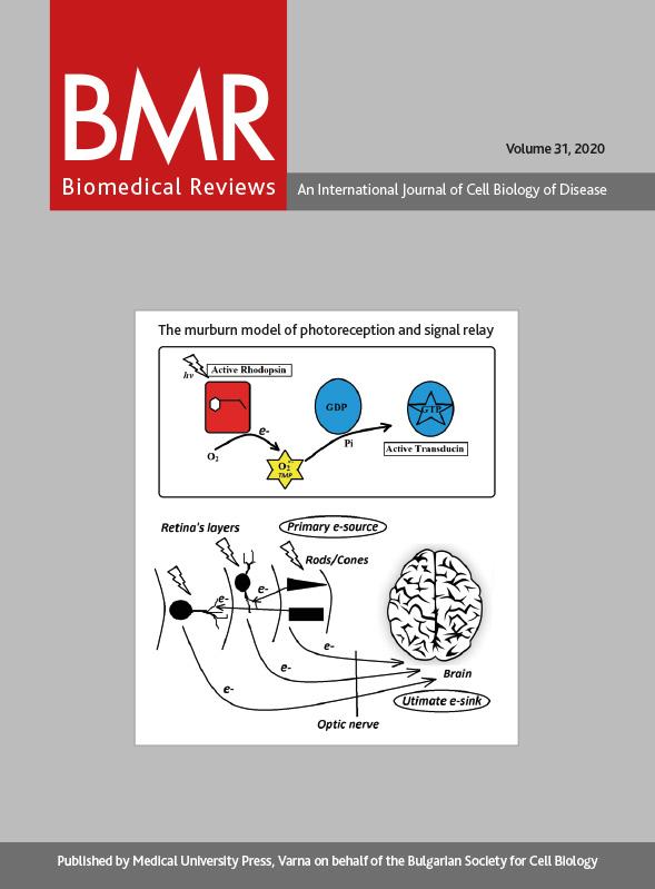 BMR 31 CVR_cover